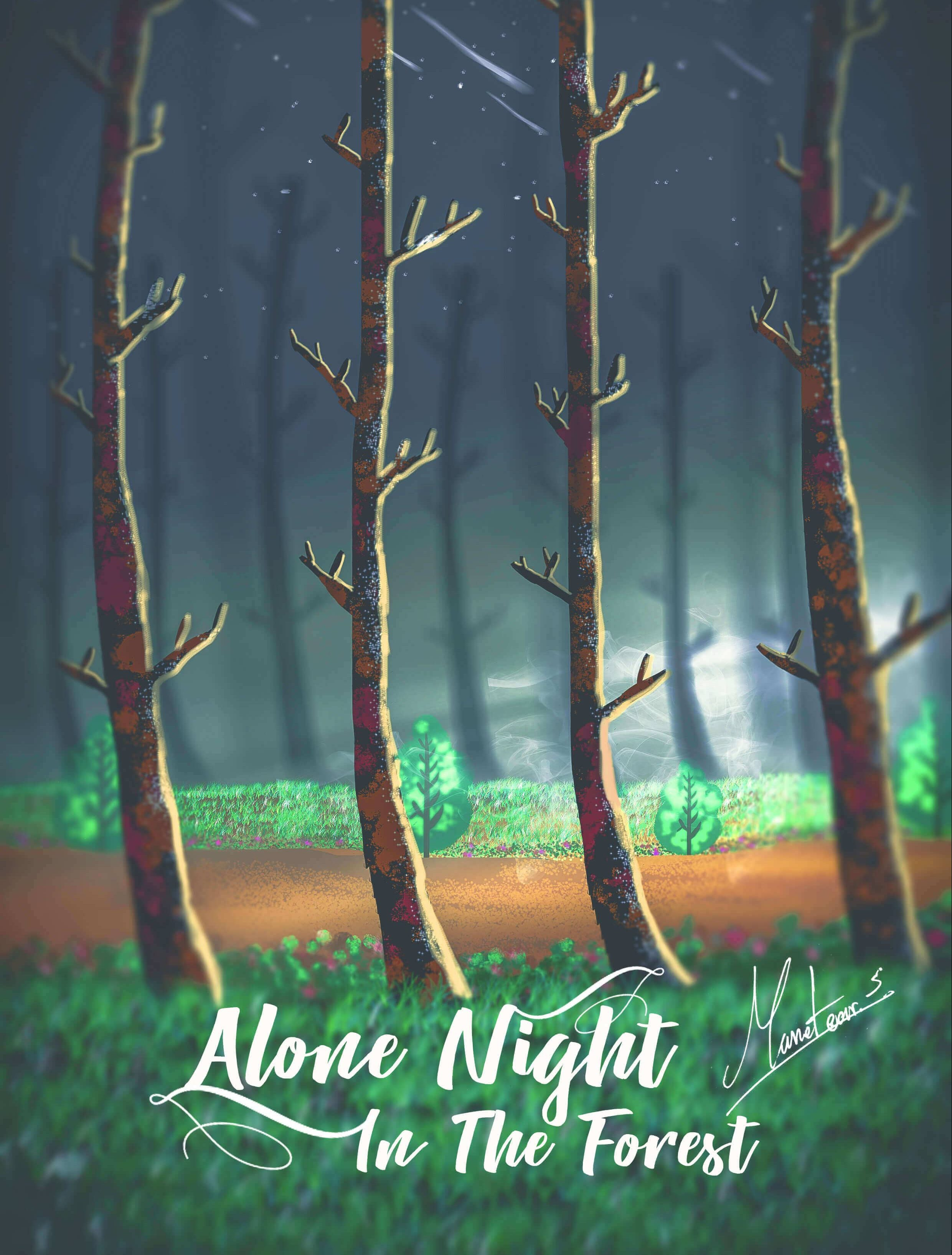 alone night in the forest - 5ac43d61c8b7a e1558122801907 - Alone Night In The Forest