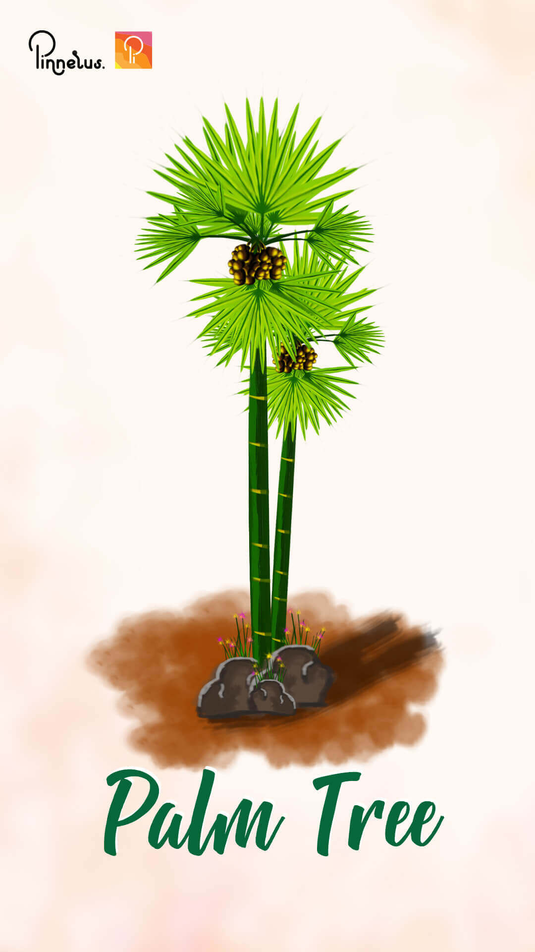 khmer palm tree