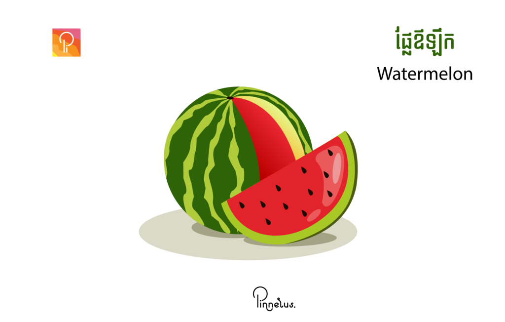 watermelon vector illustration watermelon vector - watermelon e1558120174425 1024x652 - Watermelon vector